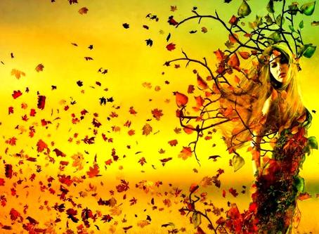 Jesień. Sezon Wagi.