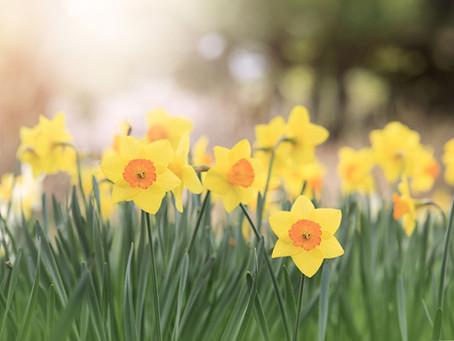 Kwiecień 2021 Część 2/2. (15.04.21-30.04.21). Prognoza astrologiczna.