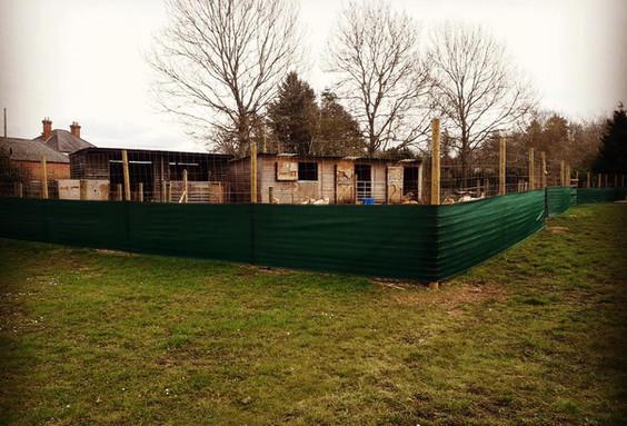Our enclosure!
