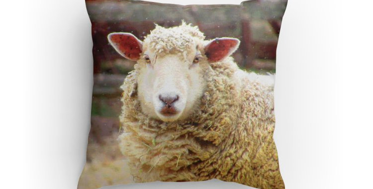Sheepish Pillow