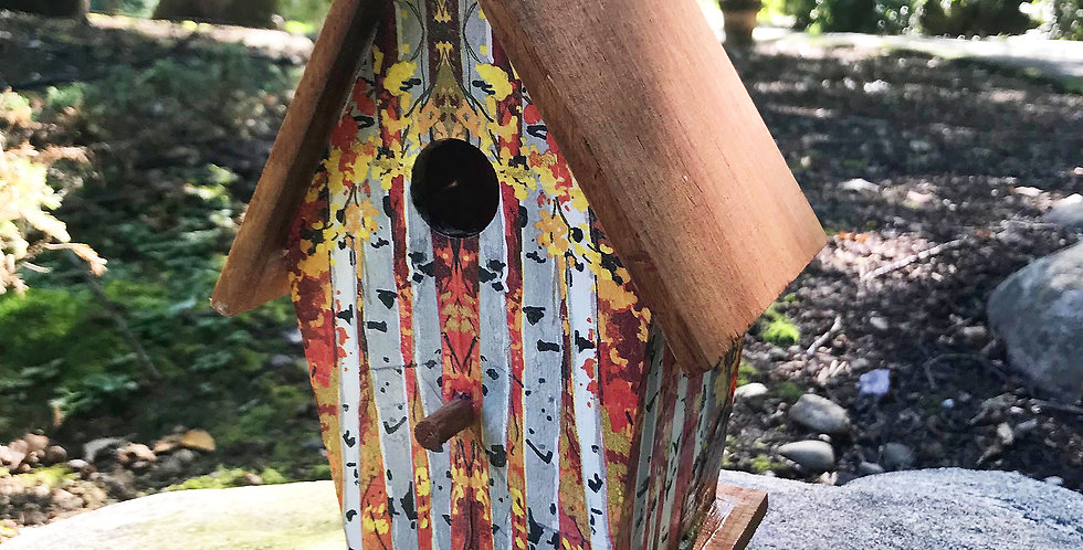 Birdhouse Birch