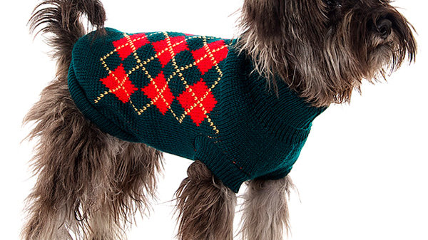 Urban Pup Red & Dark Green Argyle Dog Sweater L
