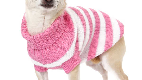Urban Pup Pink & White Candy Stripe Dog Sweater L
