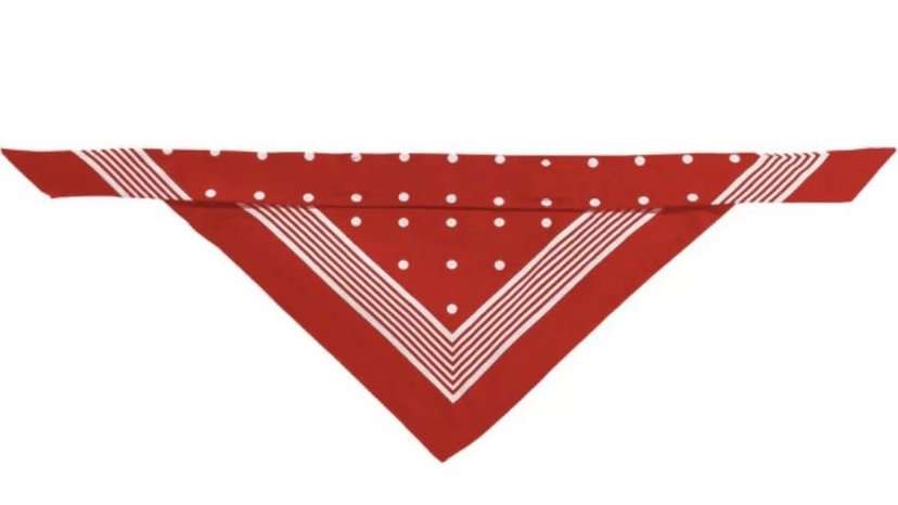 Hunter dog scarf/bandana Red
