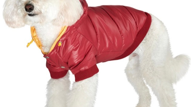 Wine Red Pathfinder Insulated Panel Dog Coat Size L