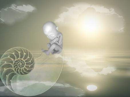 La réalisation de soi, un processus de renaissance