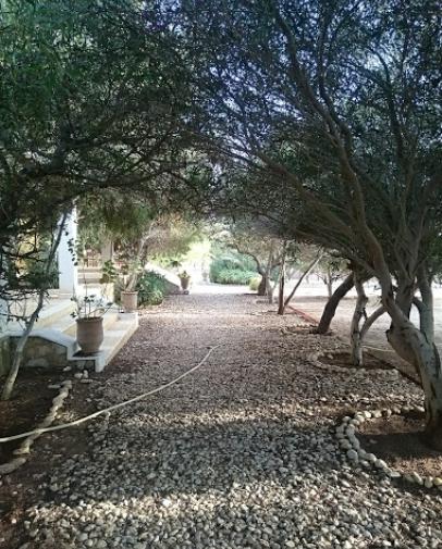 Villa Juba 10