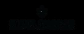 Spyder Cannabis Web Logo WB 1.png
