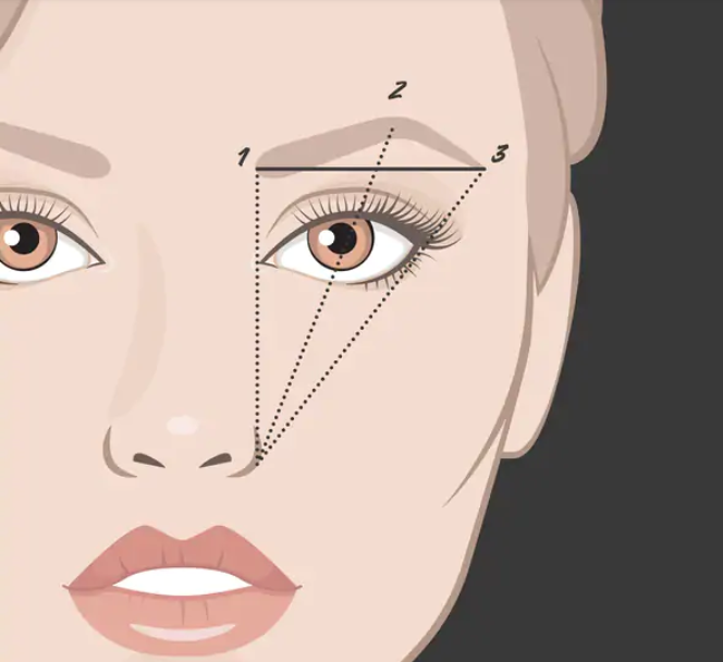 Understanding Eyebrows by the Ordinary Style Girl