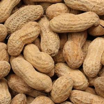 Roasted and Salted Peanuts in Shell