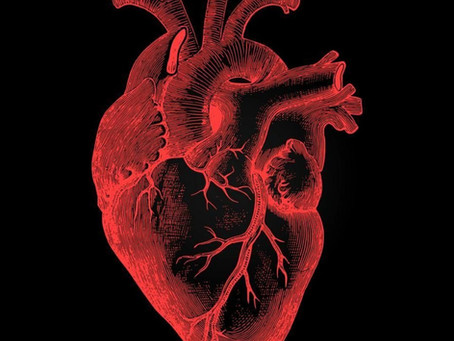 Why Cancer of the Heart is So Rare