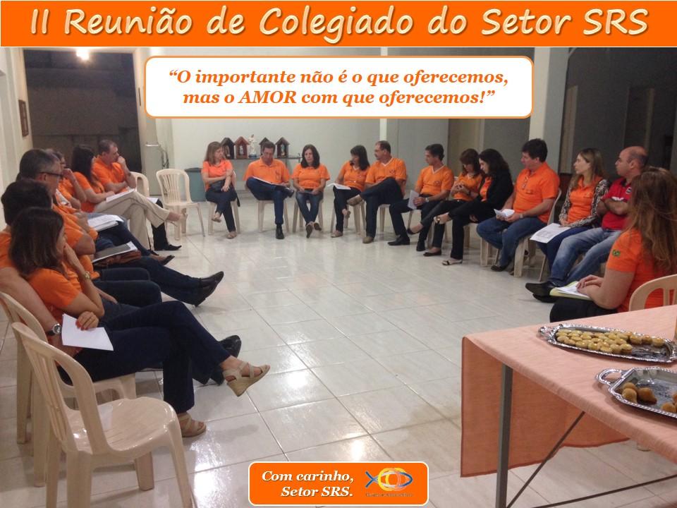 2a. Reunião de Colegiado Setor SRS