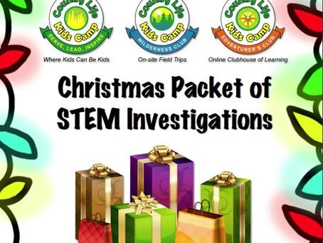 Christmas Break STEM Investigations - Family FUN!
