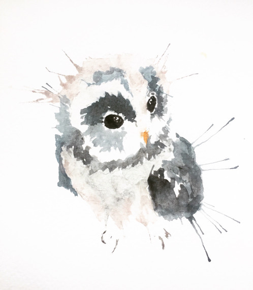 Baby owl watercolour artist herefordshire rainbird roots - Chouette rigolote ...