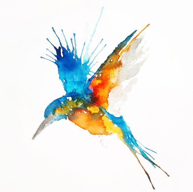 Diving Kingfisher.jpg