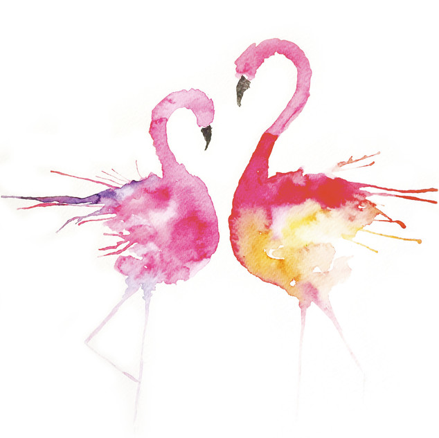 2 Flamingos.jpg