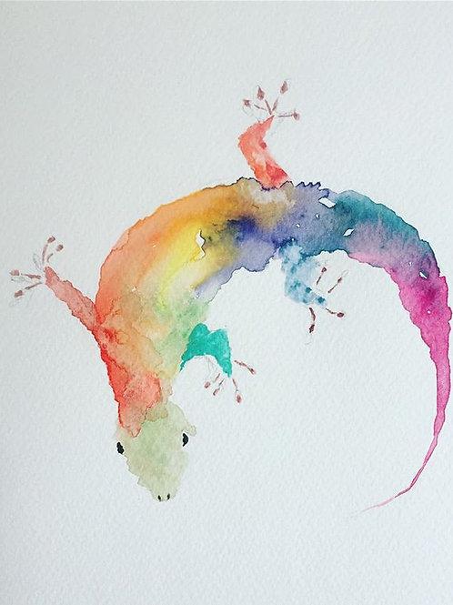 Rainbow Gecko