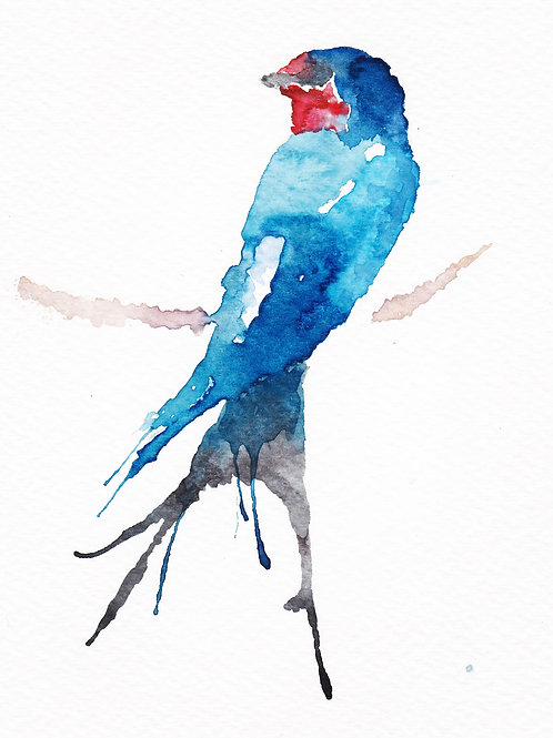 Sitting Swallow