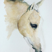 Almost done on this beauty 💕 #palomino