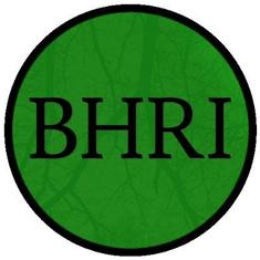 Burundi Human Rights Initiative.png