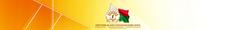 Revenue Authority of Madagascar.png