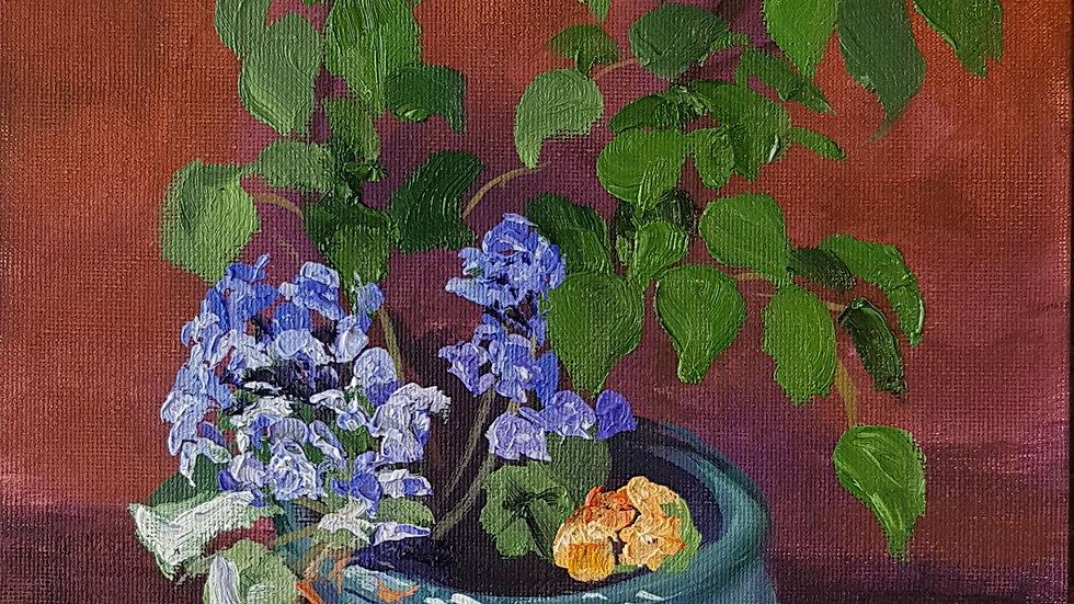 Garden Pot, Springtime - Study