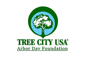 tree city flag.jpg