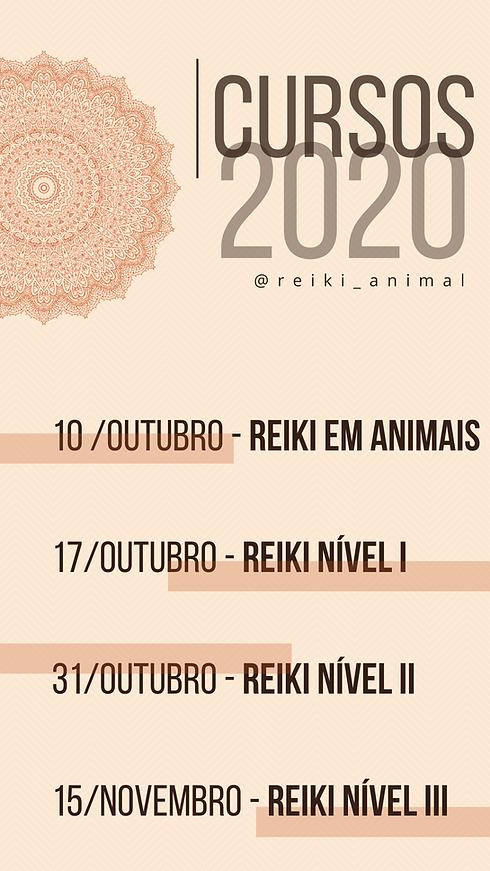 ST CURSOS PRI 2020 (2).png