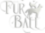 furball2019logoforfilters copyplastic co