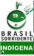 brasil_indigena_edited.png