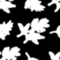 white pattern.png
