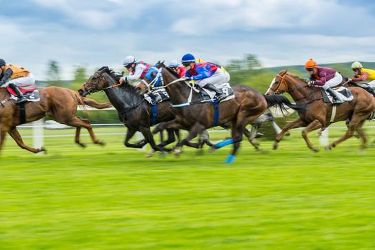 Canva - Horse Racing Outdoor Derby.jpg