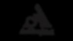 AndrenaNikol logo png.png