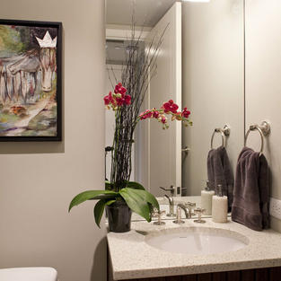 In the Austonian Showhouse
