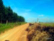 Caminho do Sol, Caminho de Santiago, trilhas de bike, Cabreuva, estradas vicinais