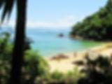 ilha das couves ubatuba praia