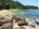 praia ilha das couves ubatuba