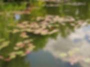 Giverny, Paris, Jardins de Monet, Impressionismo, Claude Monet