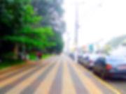 Caminho do Sol, Caminho de Santiago, passeio de bike, Capivari