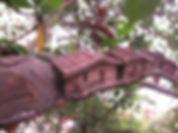 pica pau ubatuba artista rua escultor