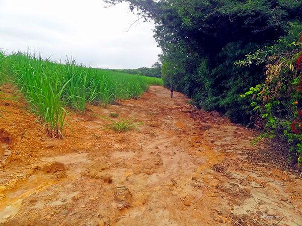 Caminho do Sol, Caminho de Santiago, passeio de bike, Represa da fazenda milha