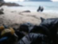 lixo na praia do cedro acampamento poluição Ubatuba