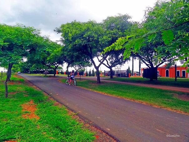 Caminho do Sol, Caminho de Santiago, passeio de bike, Salto