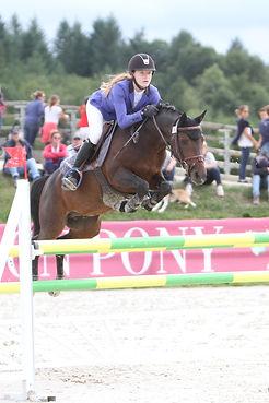 pension chevaux 91