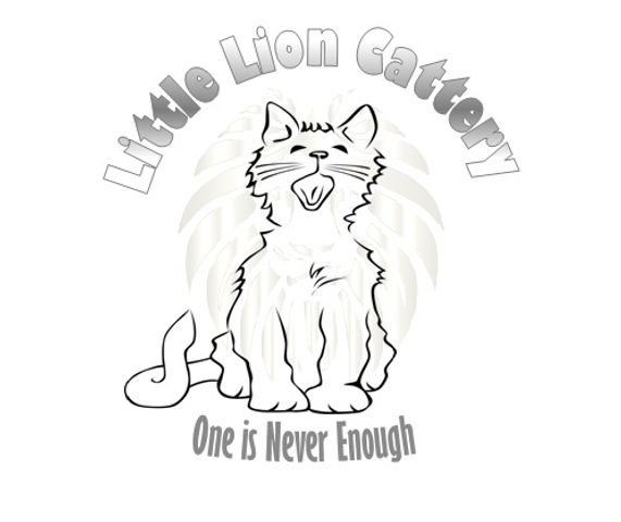 Little Lion Cattery 1.jpg