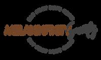 Logo Melaninfinity Society