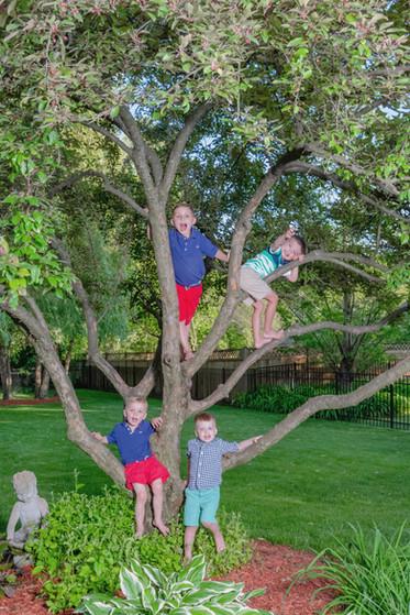 Wheaton, Illinois Family Portrait