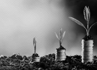 Como aprender a crescer e evitar a falência do seu negócio