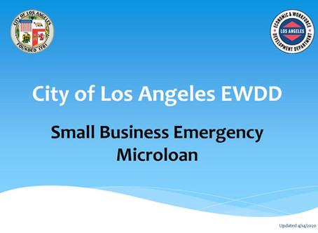 Small Business Emergency Microloan Program