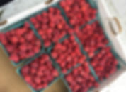 Raspberries available for pick yourown at Mathias Farms in Niagara